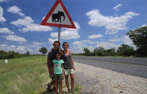 Слоны растоптали машину путешественников из Чехии (4 фото)