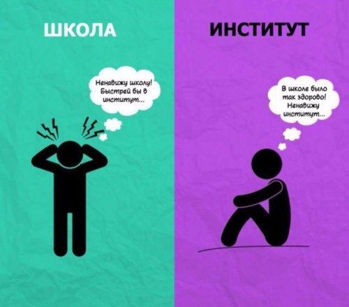 Основные отличия института от школы в иллюстрациях (8 шт)