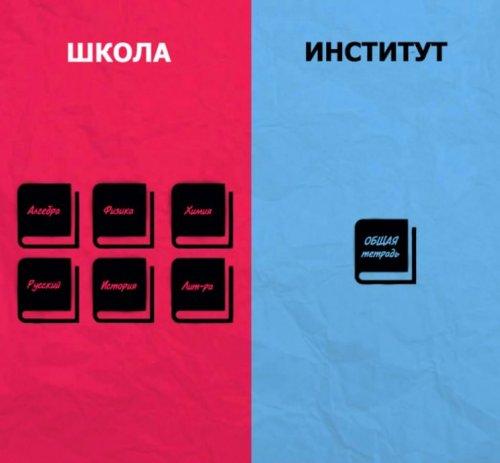 Основні відмінності інституту від школи в ілюстраціях (8 шт)