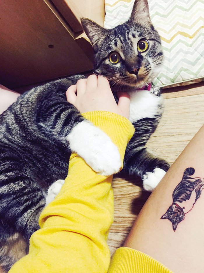 хочется, тату в виде кошки фото первым узнавать наших