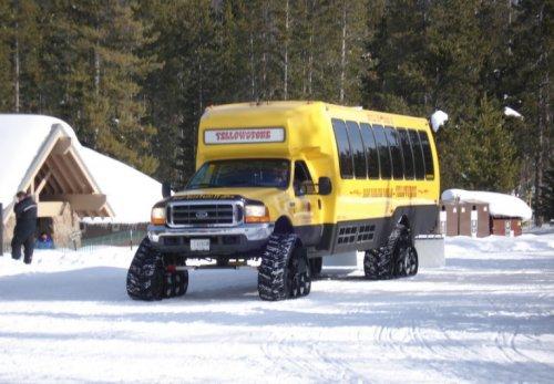 Необычные жёлтые школьные автобусы со всего света (10 фото)