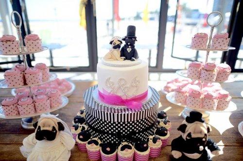 В Мельбурне состоялась собачья свадьба (13 фото)