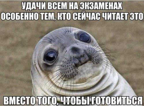 Смешные анекдоты (9 шт)