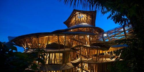 Бамбуковые дома от Элоры Харди (12 фото)