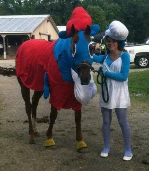 Забавные животные в костюмах смурфиков (10 фото)