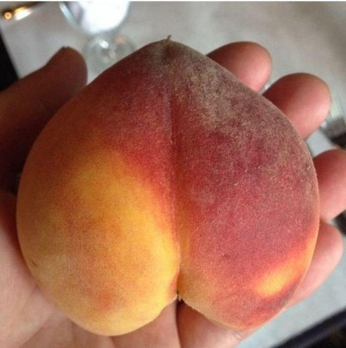 Фото фрукты в попке