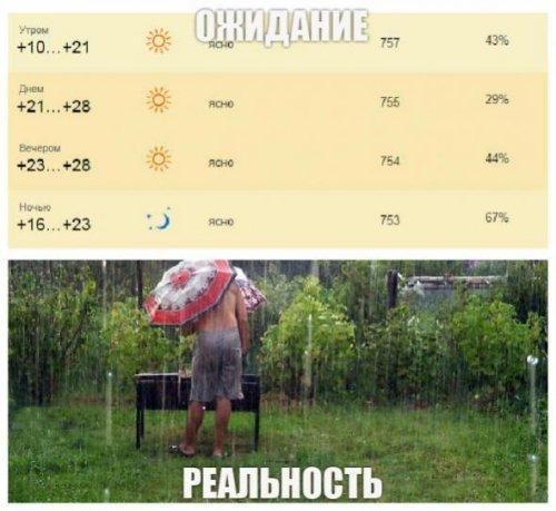 Поездка на шашлыки: ожидания vs. реальность (12 фото)