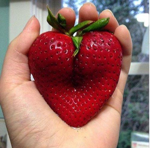 Продукты питания, не похожие сами на себя (17 фото)