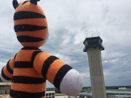 Приключения плюшевого тигрёнка Хоббса в аэропорту Тампы (7 фото)