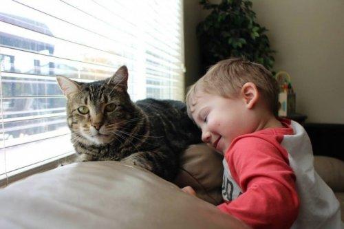 Кошка, спасшая мальчика от нападения собаки, награждена премией National Hero Dog Award (3 фото)