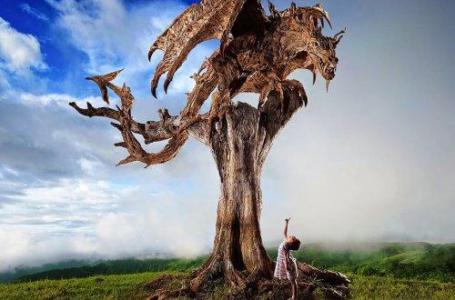 Впечатляющие скульптуры из обычных коряг Джеймса Доран-Вебба (18 фото)