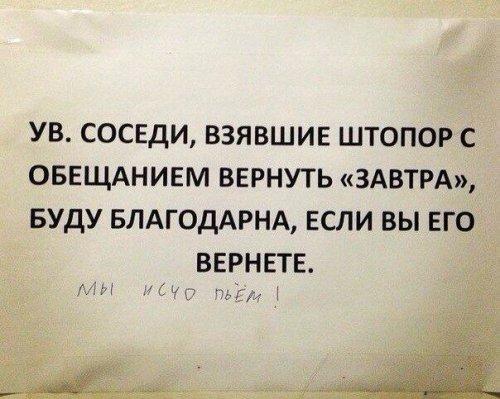 Смешные объявления в подъездах (16 фото)