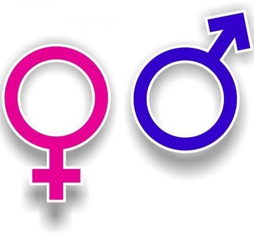 Мужчины vs. женщины: главные отличия (10 фото)