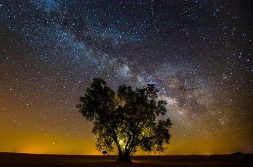 Ночное небо через объектив фотографа Жоао П. Сантоса (10 фото)