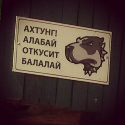 Смешные и забавные таблички-предупреждения о собаках во дворе (17 фото)