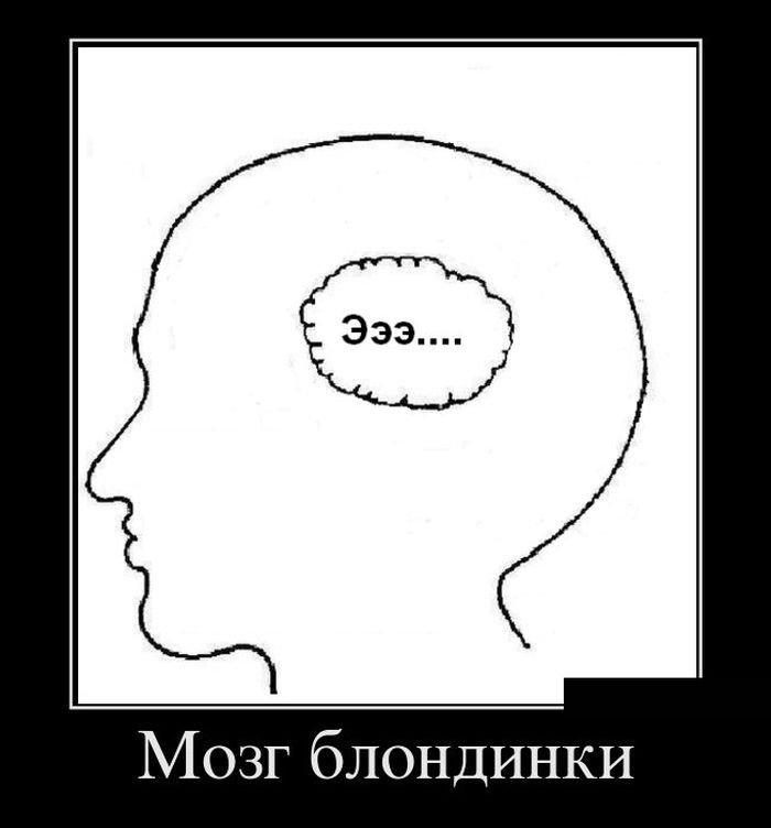 Про мозги демотиваторы