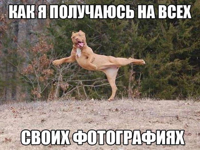 http://www.bugaga.ru/uploads/posts/2015-09/1442439491_prikol-23.jpg