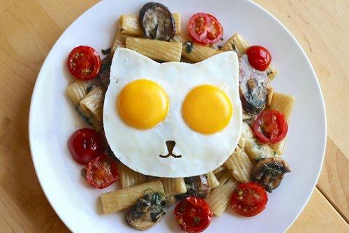 Форма в виде кошачьей мордочки для приготовления яичницы (6 фото + видео)