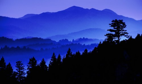 Глубина и настроение в чёрно-синих оттенках (12 фото)