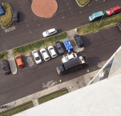 Месть мусорщиков (4 фото)