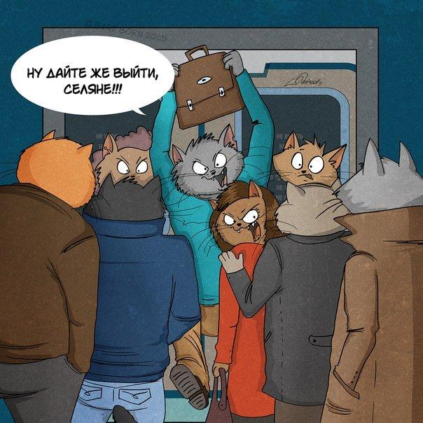 комиксы bird коты