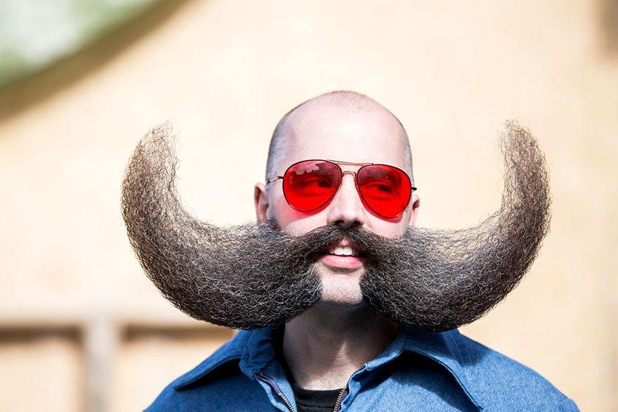 Прикольные картинки бородачей уникальная