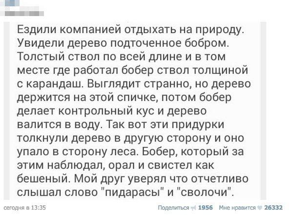 Парни Задали Жару Чёрной Шалавке