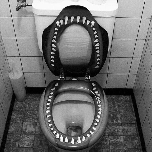 Картинки страшных туалетов