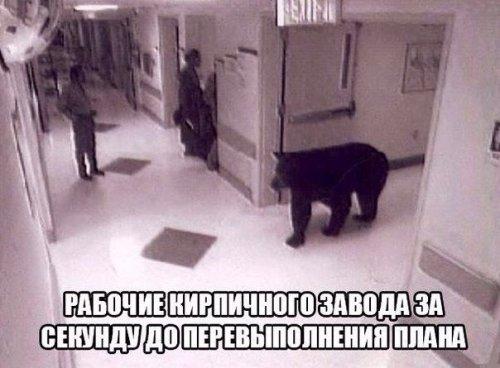 Анекдоты нон-стоп (10 шт)