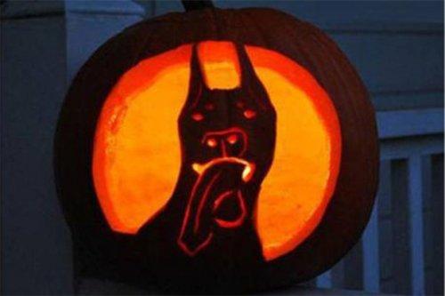 Неудавшиеся светильники Джека на Хэллоуин (12 фото)