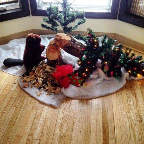 Прикольные картинки перед рождеством (53 шт)