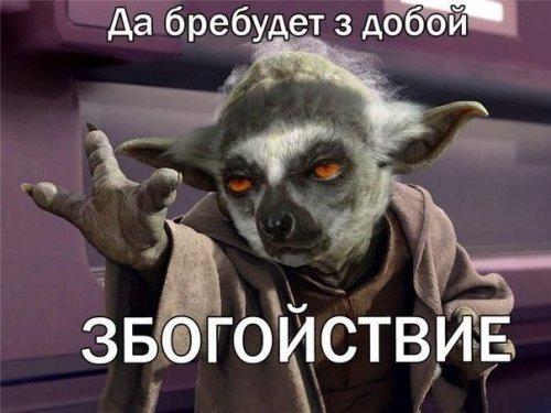 ����� �������� (15 ��)