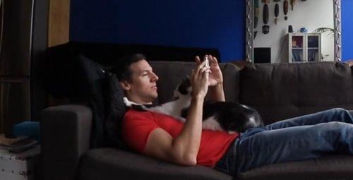 Коди, самая ласковая кошка в мире