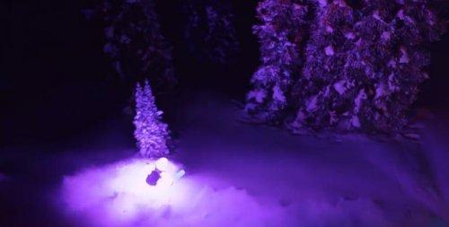 Фееричный спуск горнолыжников в светящихся костюмах