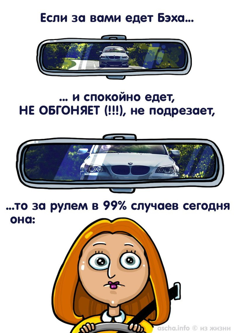 1456403158_fotoprikoly-na-avtotematiku-6