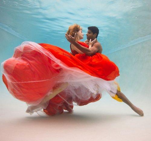 Красивые подводные фотографии (10 фото)