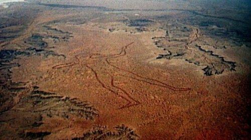 Гигант Стюарта в австралийской пустыне (5 фото)