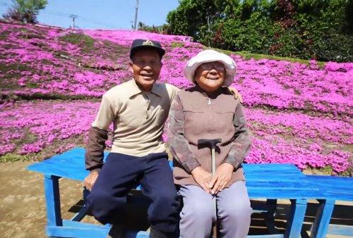Любящий муж вырастил цветочный сад для своей жены, потерявшей зрение (10 фото + видео)
