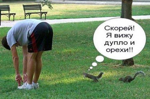 Анекдоты дня (14 шт)