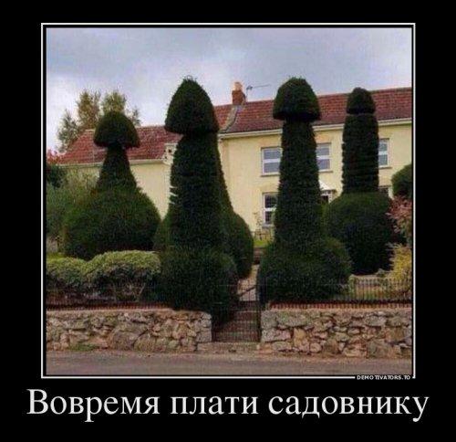 Свежая коллекция прикольных демотиваторов (15 шт)