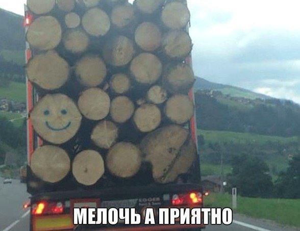 1458213851_avtoprikoly-1.jpg