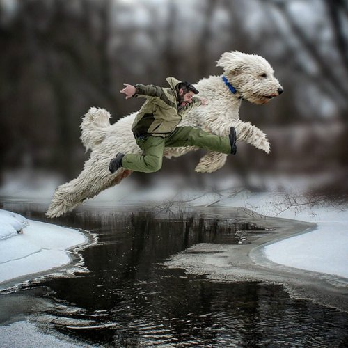 Приключения гигантского Жужи в фотографиях Кристофера Клайна (18 фото)