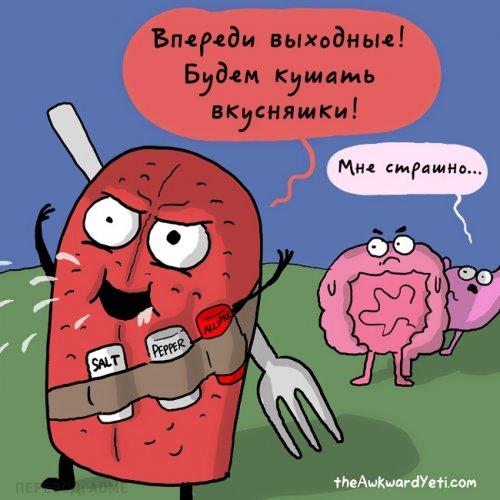 О чём говорили бы внутренние органы, если б умели разговаривать (16 фото)