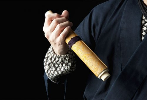 Топ-25: Захватывающие факты про настоящих ниндзя