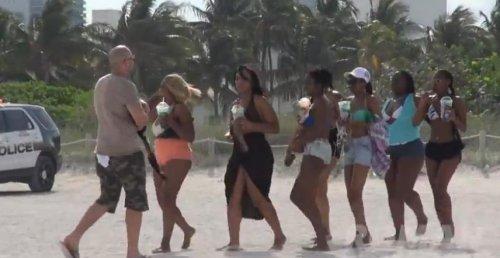 Розыгрыш Романа Этвуда: скунс на пляже