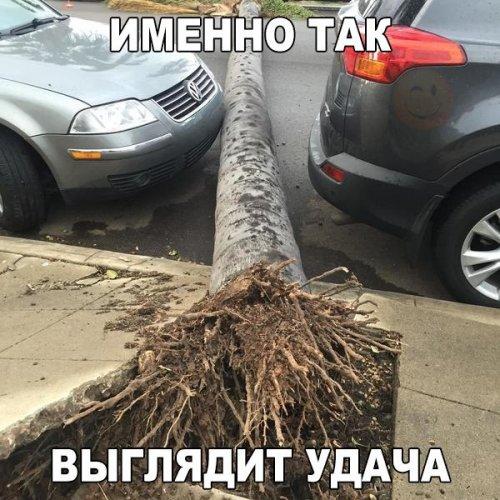 http://www.bugaga.ru/uploads/posts/2016-03/thumbs/1458811190_avtoprikoly-32.jpg