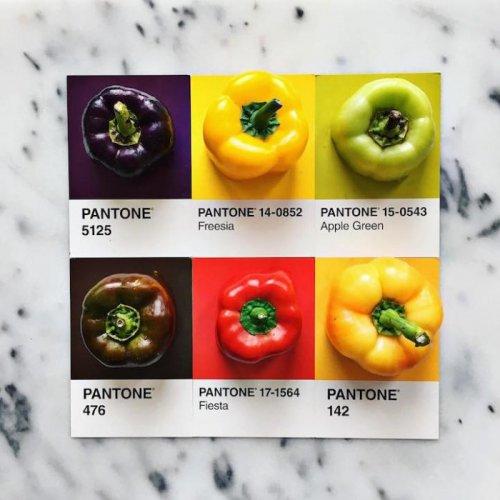 Кулинарная цветовая модель Pantone от Люси Литман (25 фото)