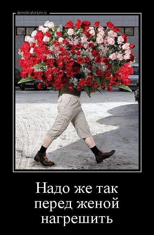 серо-белой демотиваторы с цветами упомянуть