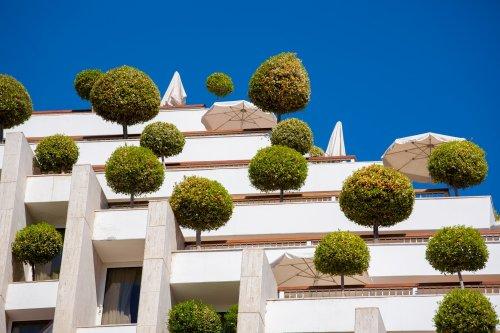 Дома, покрытые зеленью (11 фото)
