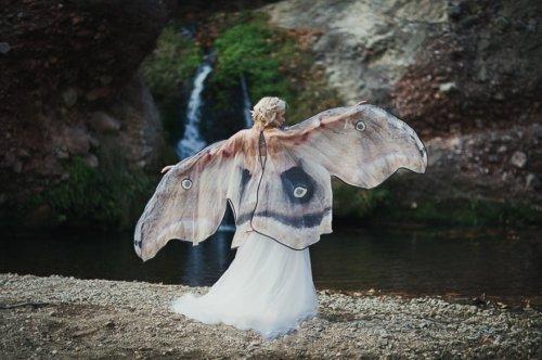 Великолепные шарфы, имитирующие крылья бабочки (14 фото)